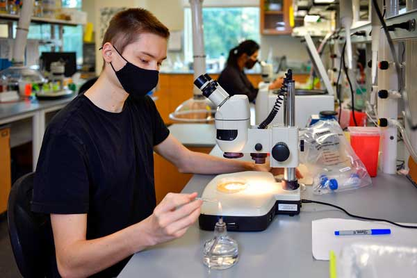 undergraduate researchers in biology lab