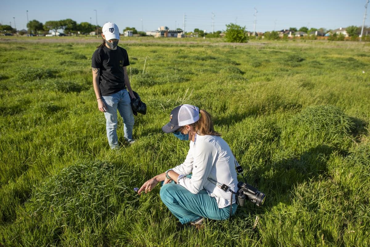 Student researchers on Pollinative Prairie